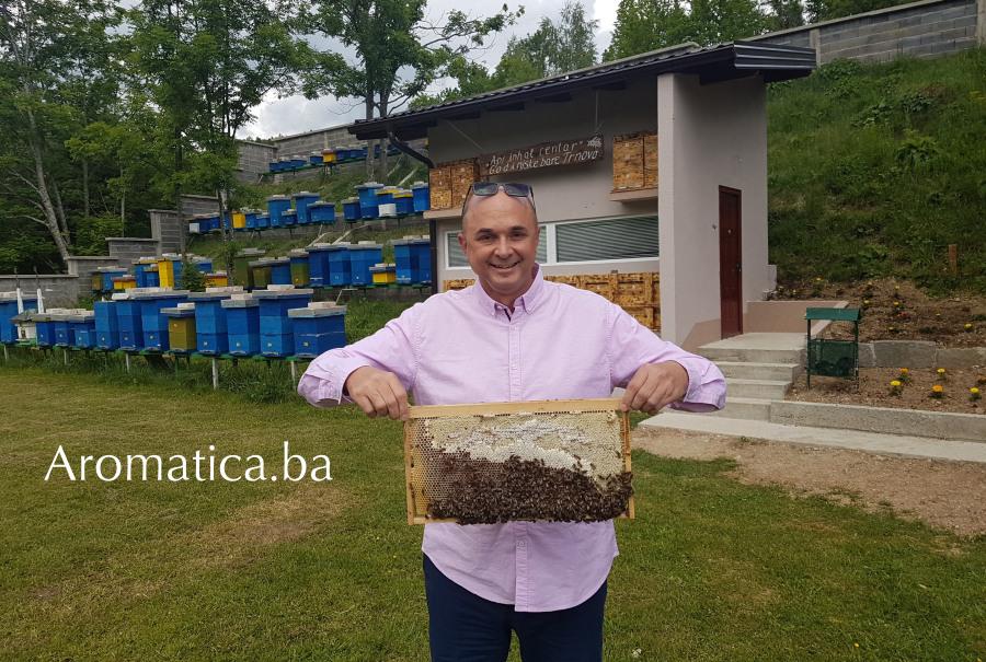Čolić med Trnovo