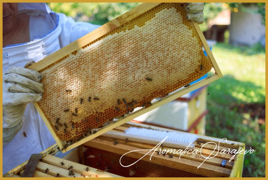 Med u saću Sarajevo